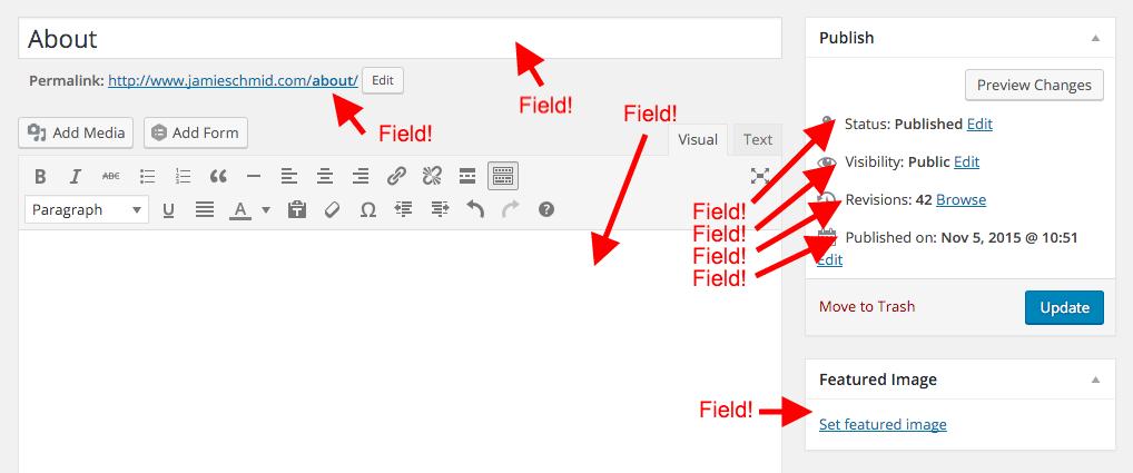WordPress page fields
